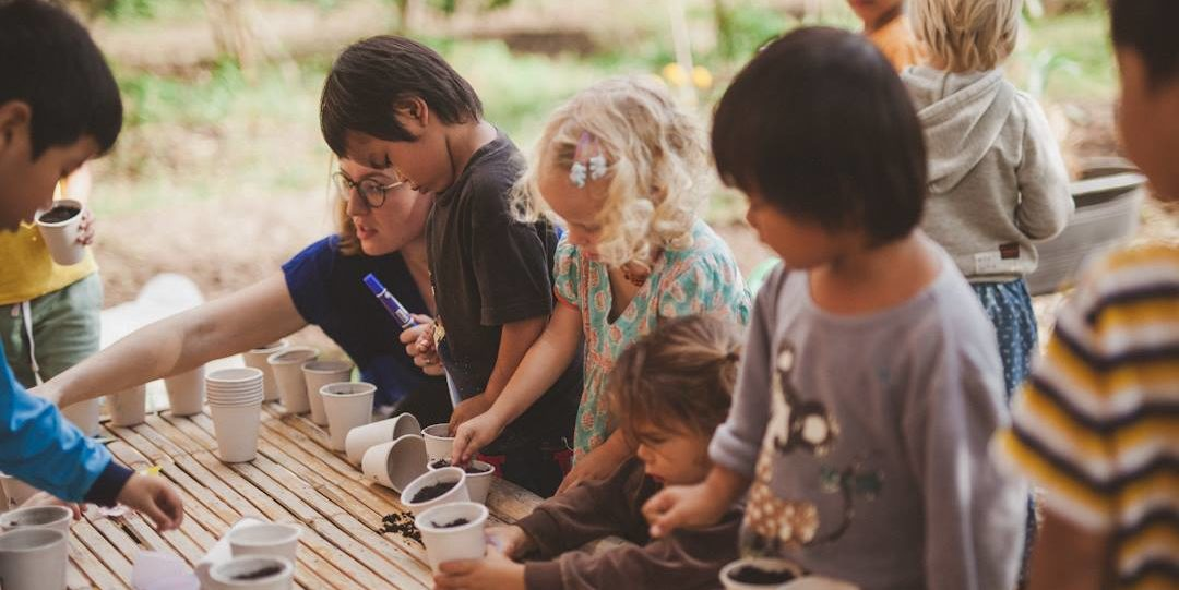 Pai Seedlings Foundation